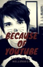 Because of YouTube (DanxReader) by Hellerbeck