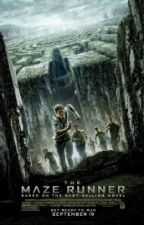 The MAZE RUNNER by difafilliang