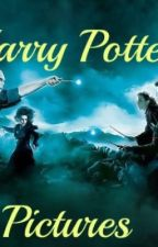 Harry Potter Pictures by Narzissa12