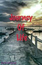 Journey Of Life by braingeek