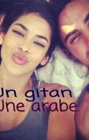 Chronique: Une arabe, Un gitan? by MillaComptchro