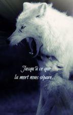 Jusqu'à se que la mort nous sépare... by Nayoafenikusu
