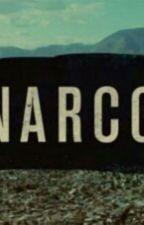 NARCOS by k-l-e-i-n-e-r
