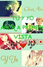Amor a primera vista-Tu Y Yo (ChatNoir y Tu) by _Yukki_