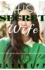 His Secret Wife by xzbdppx