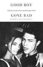 Good Boy Gone Bad by bribrinini