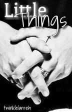 Little Things • Larry Stylinson by twinklelarreh