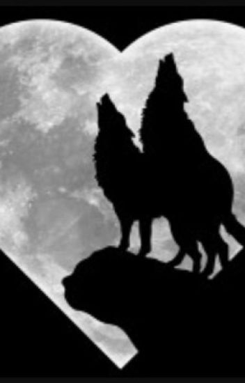Master of the Dungeon Bat and the Wolf