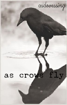 As Crows Fly - Soft Sounds - Wattpad