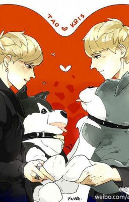 [ KrisTao ] Magic of love.