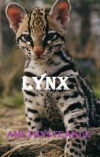 Lynx by amethysteagle