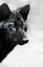 Wolf Ocs by _-Error_Sans-_