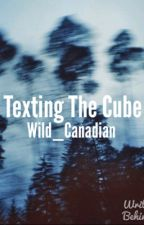 Texting The Cube by Wild_Canadian
