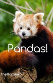 Pandas by thesuncat