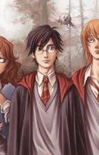 Harry Potter x Reader :) [ON HOLD, SORRY ;-;] by Darknes05