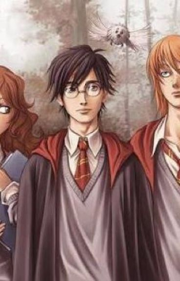 Harry Potter x Reader :) [ON HOLD, SORRY ;-;]
