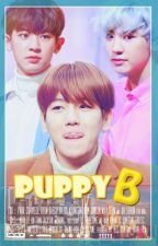 "[Fic EXO] Puppy ""B"" [ChanBaek] by duck-exo"