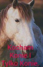Kocham Konie I Tylko Konie. by Eliza2005r