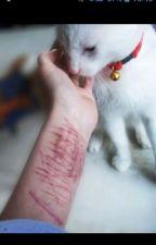 Рассказы селфхармеров |порезы| by KseniaLigrova