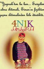 4N1K - Bilmedikleriniz by snryks
