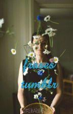 Δ Frases Tumblr Δ by 123karlitaFree
