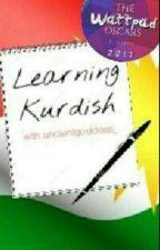 Learning Kurdish (auf Deutsch) by ancientgoddess_