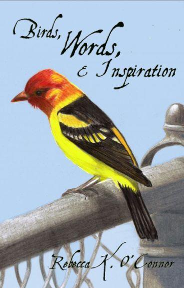 Birds, Words, & Inspiration by RebeccaKOConnor