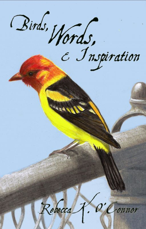 Birds, Words, & Inspiration by RebeccaKOConnor