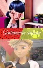 Miraculous ladybug Sentimientos Confusos by ArianaLadybug