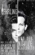Der Lehrling und der Novize [Larry AU] by Headlong90