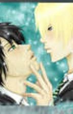 In the Stars (Drarry One-Shot) by the_potions_master