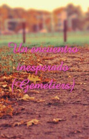 Un encuentro inesperado (Gemeliers) by melodygemelier99