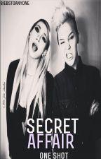 Secret Affair (One Shot) by BiebsToAnyone