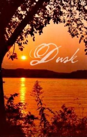 Dusk: Seth Clearwater Love Story by 420Ringo