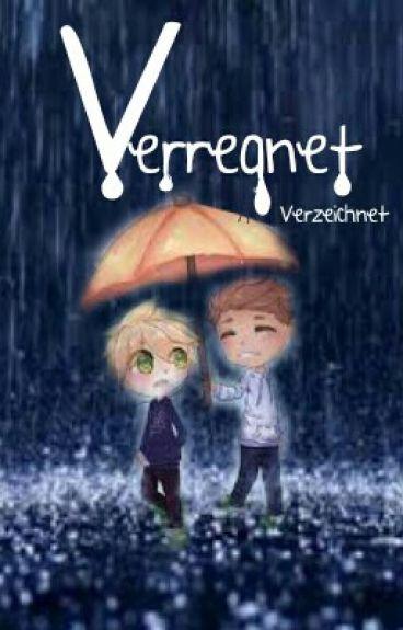 Verregnet  - Stexpert