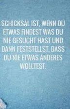 Vom Hater.Zur festen Freundin?! DnerFF by DieNichtGeliebte