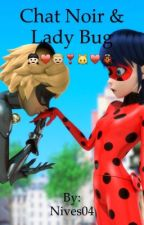 Lady bug & chat noir ❤️/❤️ by Nives04