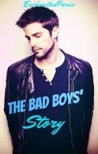 The Bad Boys Story by EnchantedParis