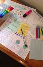 Revision Book by tig_jessie