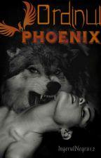 Ordinul Phoenix by IngerulNegru12