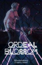Ordeal Blossom // Narry by louisthekitten