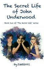 The Secret Life of John Underwood (The Secret Life Series #2) by DMB2001