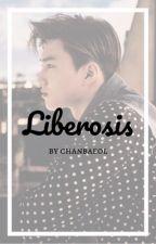 Liberosis {Kim Junmyeon} by chanbaeol