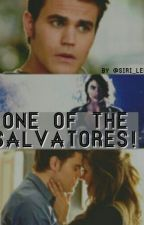 One of the Salvatores by siri_lee