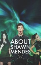 About Shawn Mendes by kamilakabeyo