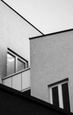 Sessiz Kadınlar ve Çatı Katları by rarslan