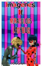 Fotos Miraculous Ladybug by -Cxndy