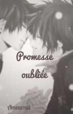 Promesse oubliée by Amournul
