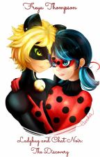 Ladybug and Chat Noir: The Discovery by tikkigirl77