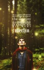 The Adventures Of Merlin ON HOLD by PlasticTrees